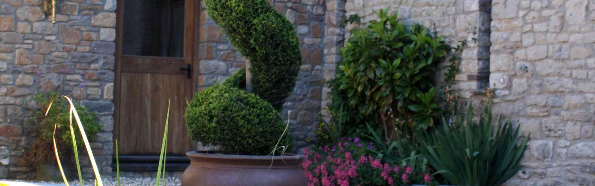 Garden Design Abergavenny